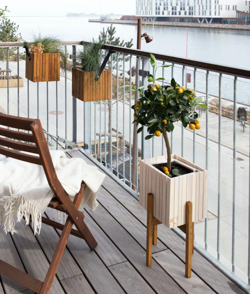 2021'nin En Rahat Ev Dekorasyonları, balkon, saksıda limon ağacı